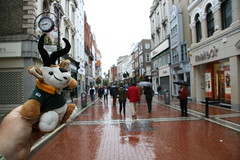 Teddybok gets a rainy look at Grafton St (by Dave Reinhardt)
