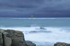 Avis de tempête sur les Chiens Perrins photo by emvri85