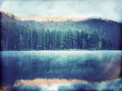 Lake Logan, Otherwise Untitled (by funkybug)