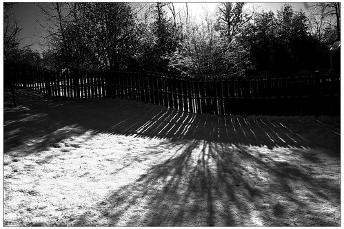 Old Fence Light Shadows