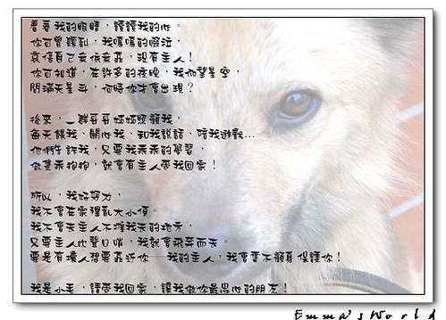 小毛的介紹200212-1