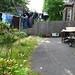 Garden Before II