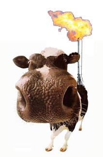 cowburner
