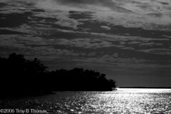 20061213_EvergladesLandscape05