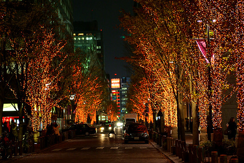 Marunouchi winter illumination 2006-01