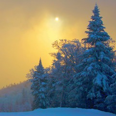sunrise trail new years eve photo by paul+photos=moody