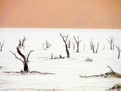 Namibian desert - another World photo by Stanley Zimny (Thank You for 12 Million views)