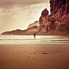 New Zealand / Beach / Landscape photo by ►CubaGallery
