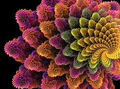 Fractal flower photo by Emmanuel Cateau