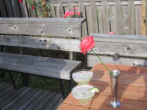 Margarita's and Roses