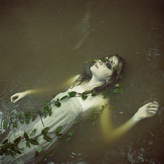 stagnant photo by holly henry