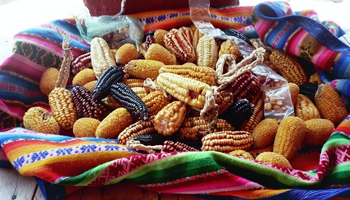 dried  corn, peru