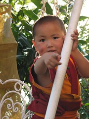 IMG_1959 photo by Tenzin Phuntsok Rinpoche