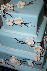 asian blue photo by The Sugar Moon Cakery
