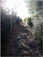 Trail de noel Ollioules 2006 (232)reworked