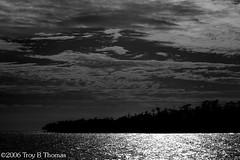 20061213_EvergladesLandscape04