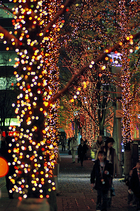 Marunouchi winter illumination 2006-03
