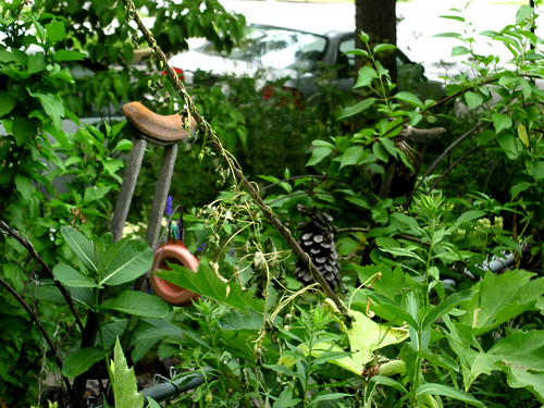 Old crutch in Dennis' garden