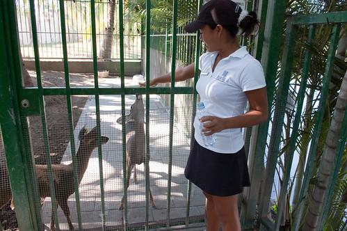 Mexico.PuertoVallarta2010-102