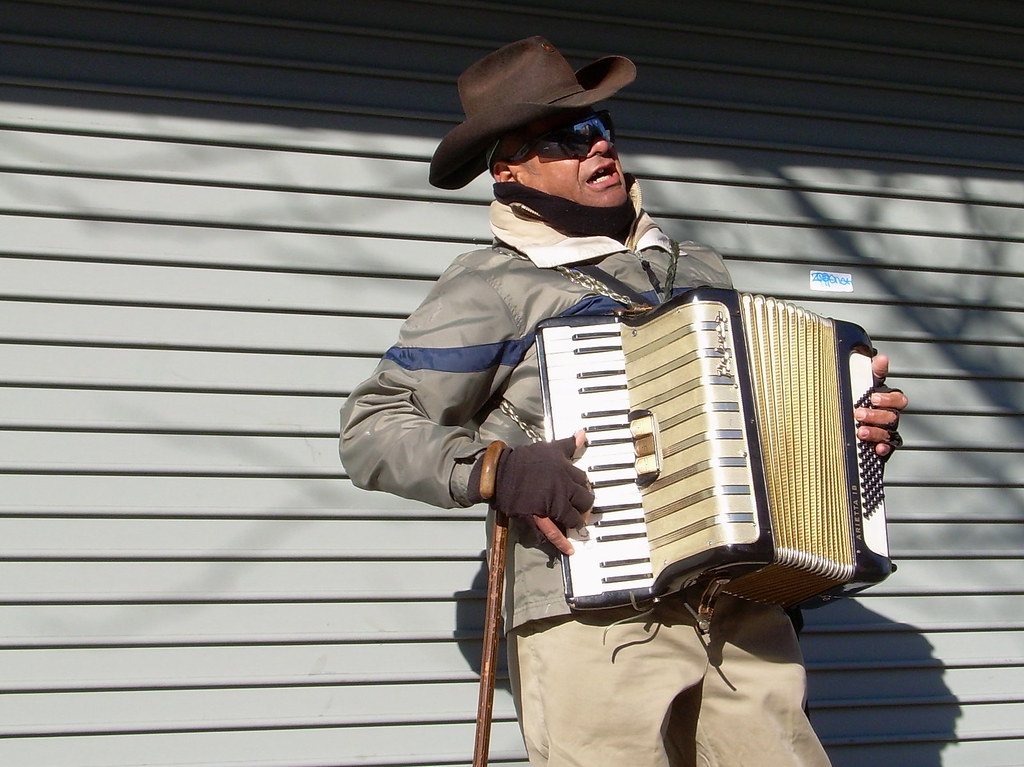accordianist, sunset park