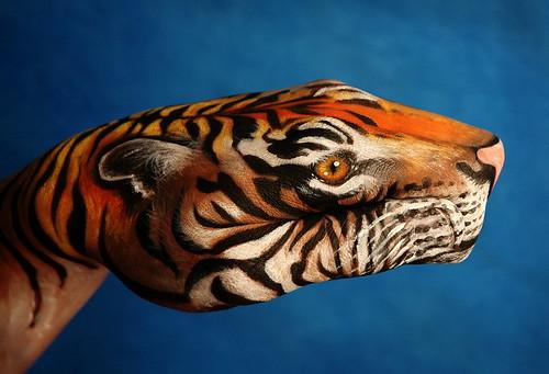 tigre (by joaoko)