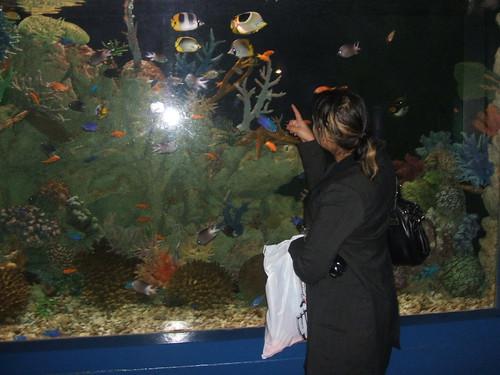 Mmmm, fish