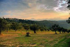 Paesaggio marchigiano - Marche's landscape photo by emorpi