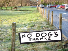 No Dog's Thank's