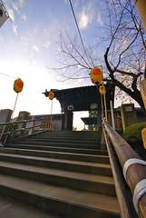 20061214-泉岳寺白金散歩