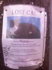 Norm is missing, Ballard, 12/15/06