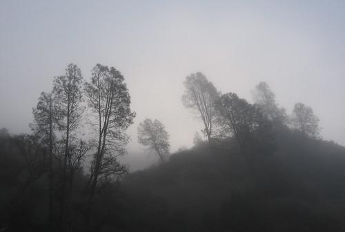 Henry Coe State Park, April 2006