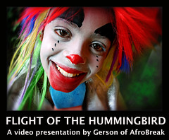 Flight of the Hummingbird – See the Video