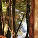 Agate Falls 004