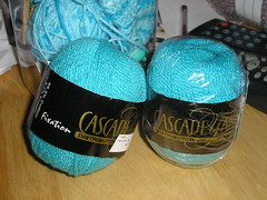 Cascade sock yarn