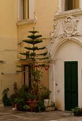 Italy1 dec 06 104