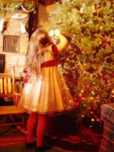 Trimming the Tree 2006