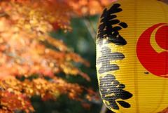 20061213-泉岳寺散歩