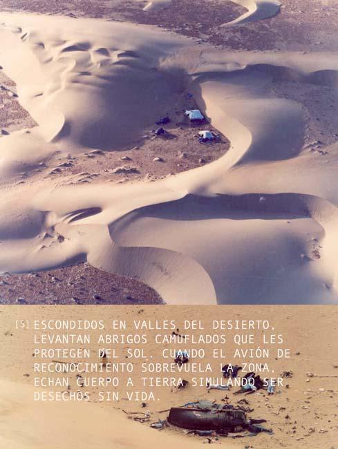 Sahara panels.panel5_txt_span.La Laguna