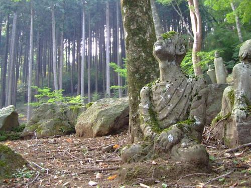Bosque budista class=