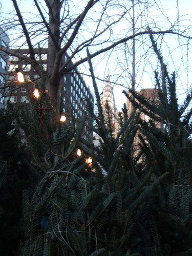 Christmas Trees and Chrysler Building