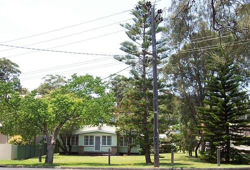 Jirramba Avenue Saratoga