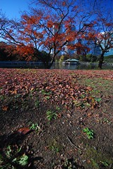 20061218-浜離宮散歩