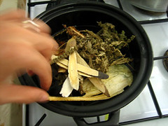 Chinese herbs - cooking