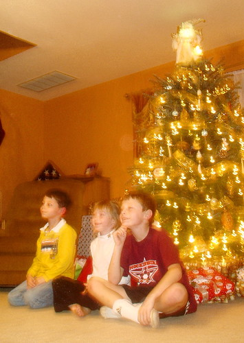The kids in front of the tree