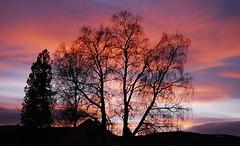 Aurdal night skies photo by Stian Kildal