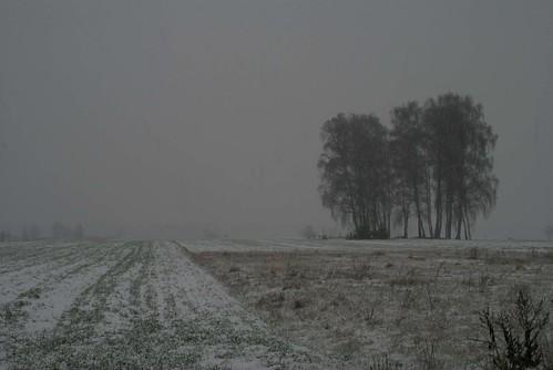 Poland5 dec 06 002