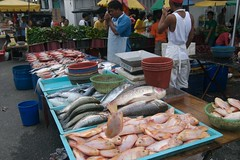 Fish at the night market in Kajang