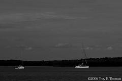 20061213_EvergladesLandscape01