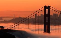 Iconic Fog photo by A Sutanto