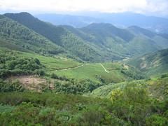 El Valle de Aniezo desde las alturas